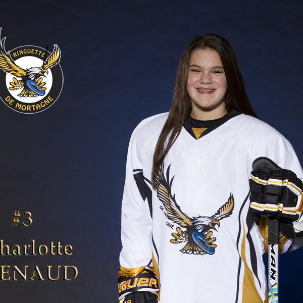 #3 charlotte renaud 8x12